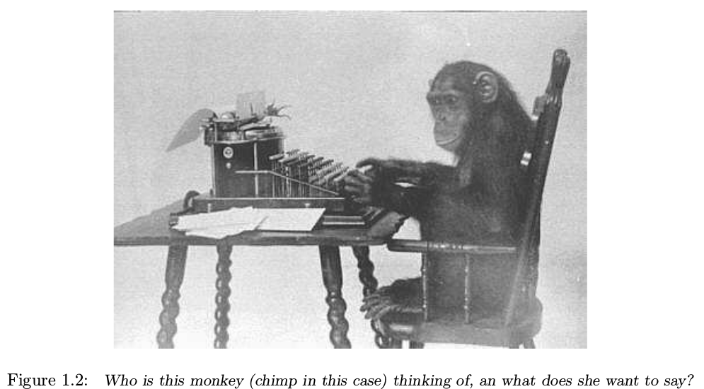 Chimp at the typewriter, what is she thinking?