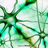 Green Neurons